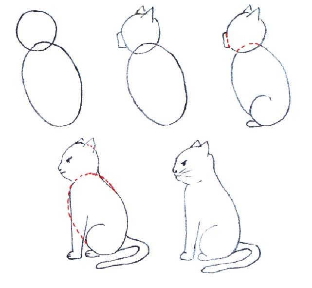 Как нарисовать сидящую кошку (профиль): пошаговая схема