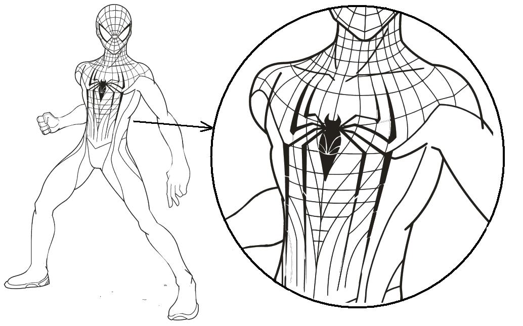 Рисунок человека паука карандашом в полный рост поэтапно хотим