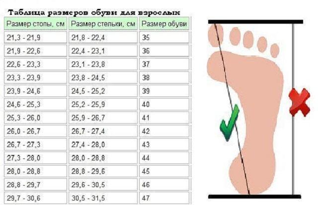 sootvetstvie-dlini-stopi-k-razmeru-stelki-i-obuvi-dlya-vzroslih Как связать красивые тапочки спицами и крючком? Оригинальные тапочки-носочки и тапочки-сапожки, схемы