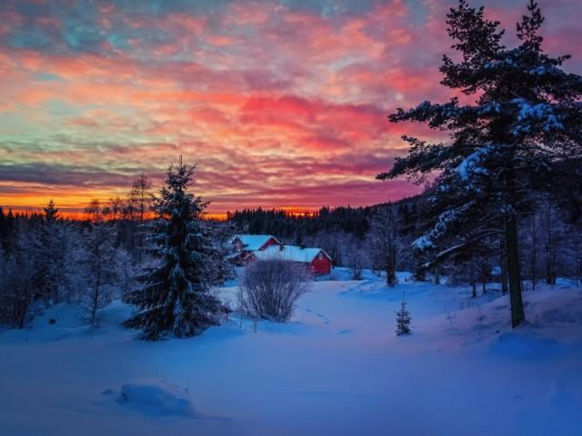 foto-zhirnie-svyazannaya-na-prirode
