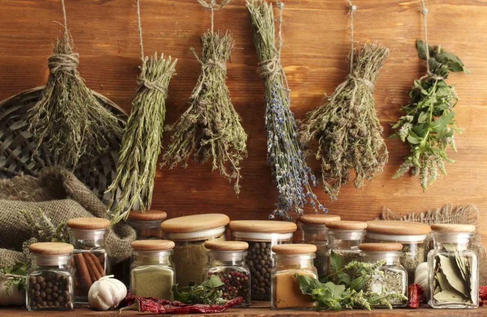 Травы и растения от миомы матки