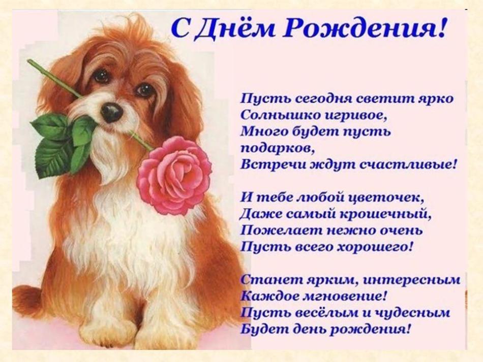 Поздравление с днем рождения собаке стих состоит