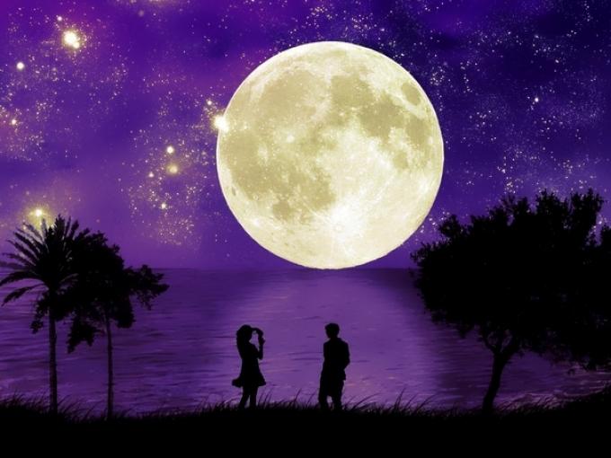 Благоприятные дни для посева цветов по лунному календарю в августе