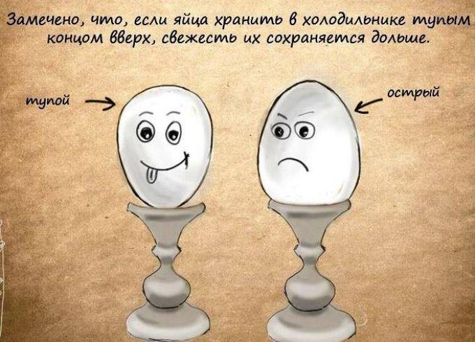 Как лучше укладывать яйца для хранения