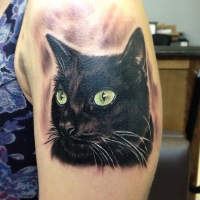 Кота-тату в тюремном мире наносят воры