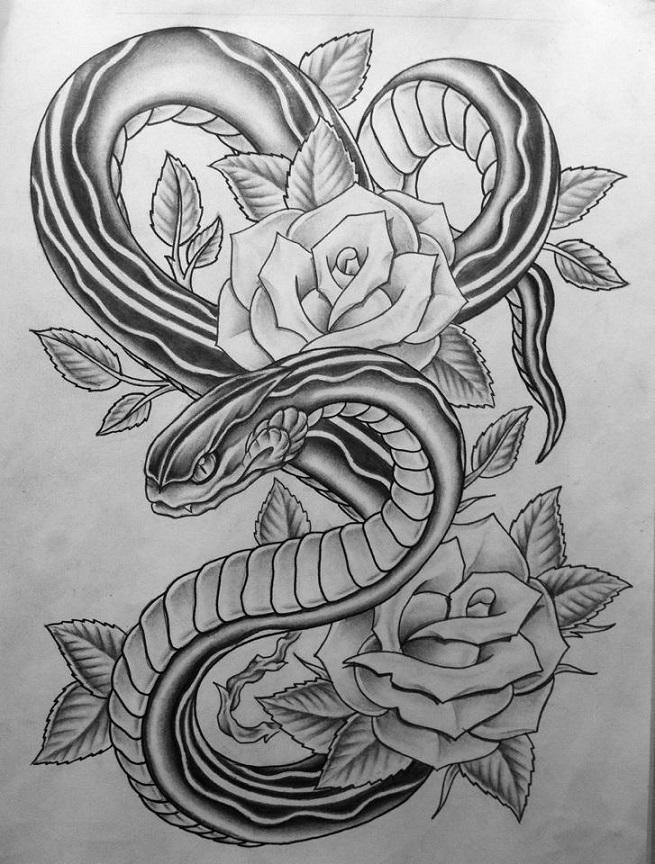 картинки змей карандашом в цветах все основания полагать