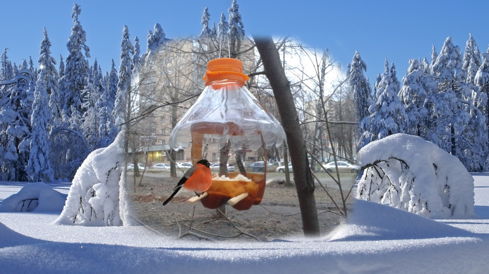 bolshaya-kormushka-dlya-ptic Кормушка для птиц из пластиковой бутылки