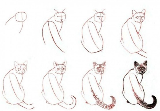kotik-v-pol-oborota-shema-poyetapno Как нарисовать котенка карандашом поэтапно для начинающих и детей? Как нарисовать котенка аниме с милыми глазками, мордочку котенка?