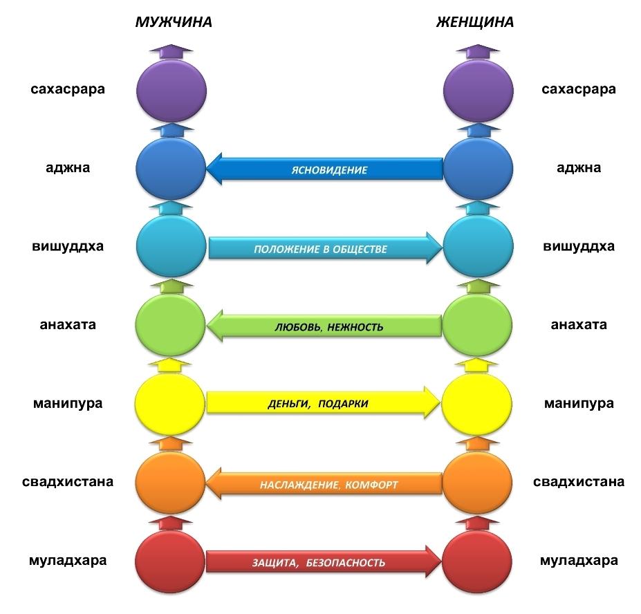 Схема вхаимодействия мужчины и женщины на уровне их чакр