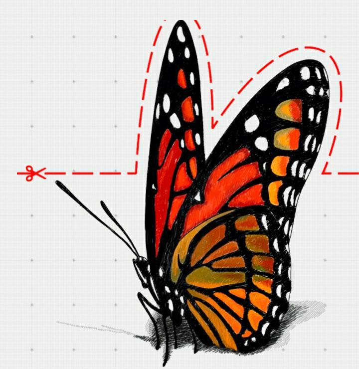 virezaem-kartinku-po-punktirnim-liniyam Как нарисовать 3д (3d) рисунок на бумаге карандашом