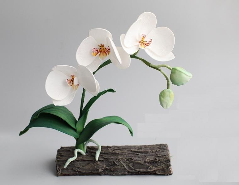 belaya-orhideya-iz-foamirana Цветы из фоамирана своими руками 75 фото для начинающих