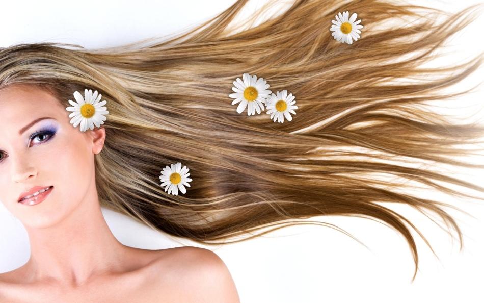 Ромашки в длинных волосах девушки