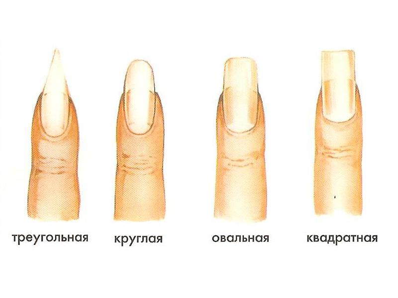 Базовые формы ногтей.