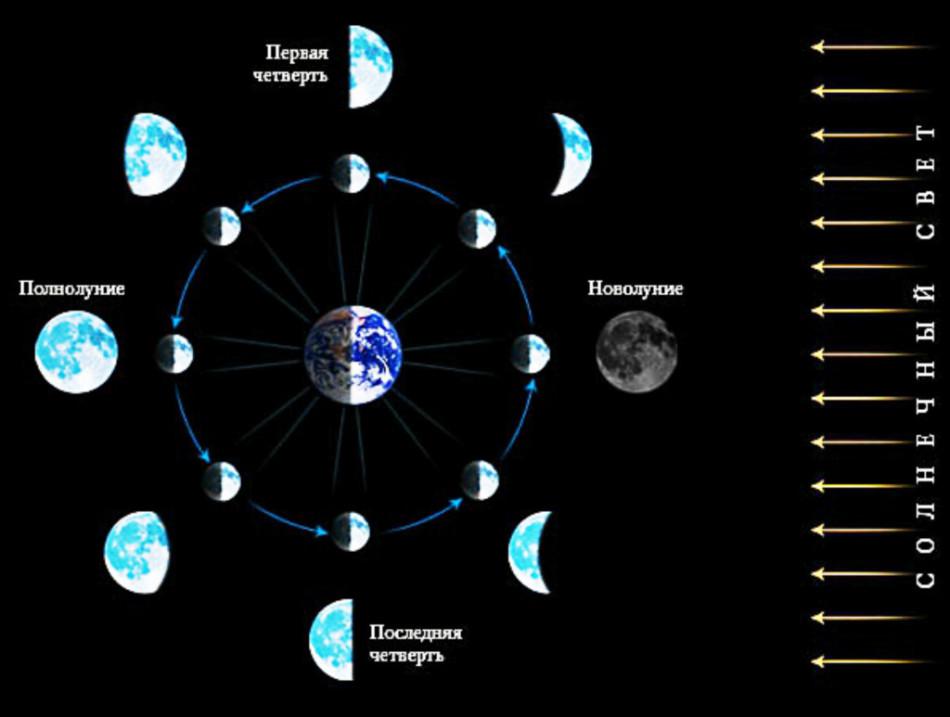 Фазы луны и их названия