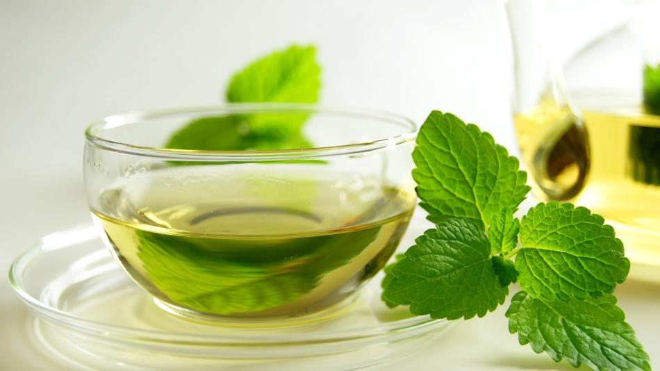 Мята и зеленый чай - средства для похудения