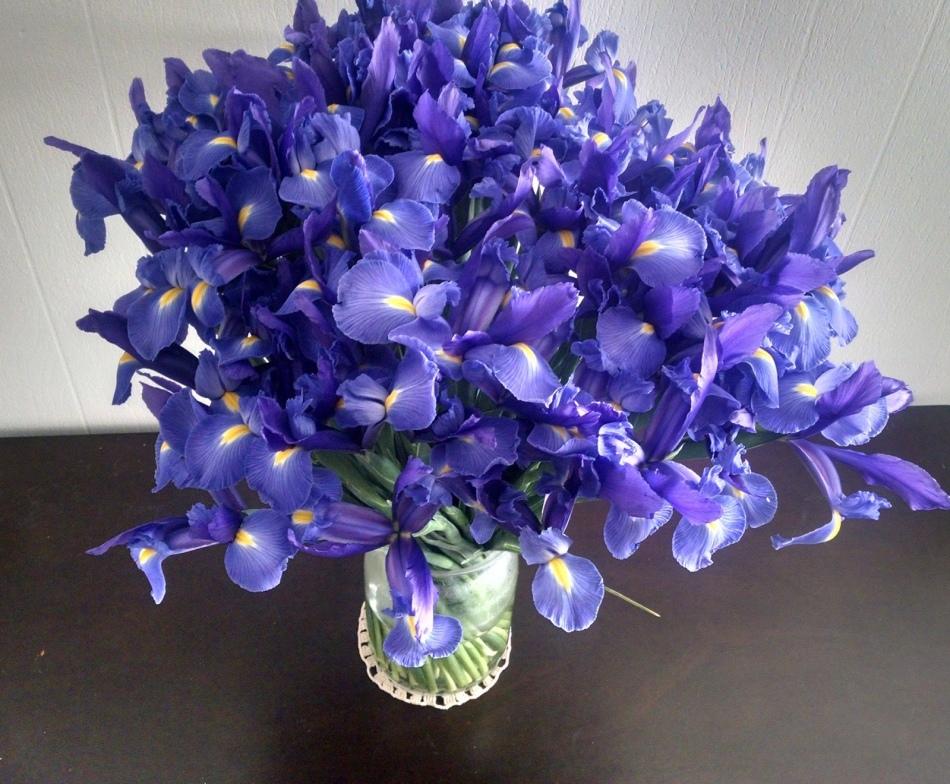 Букет из синих ирисов