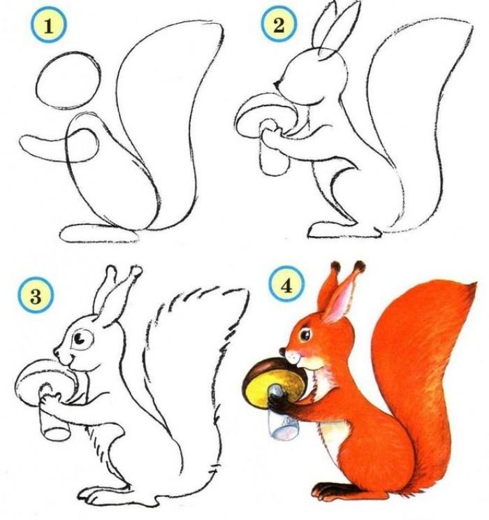 belka-s-gribom-dlya-detei-poyetapno Как нарисовать белку поэтапно карандашом для детей и начинающих? Как нарисовать белку из сказки о царе Салтане и на дереве?