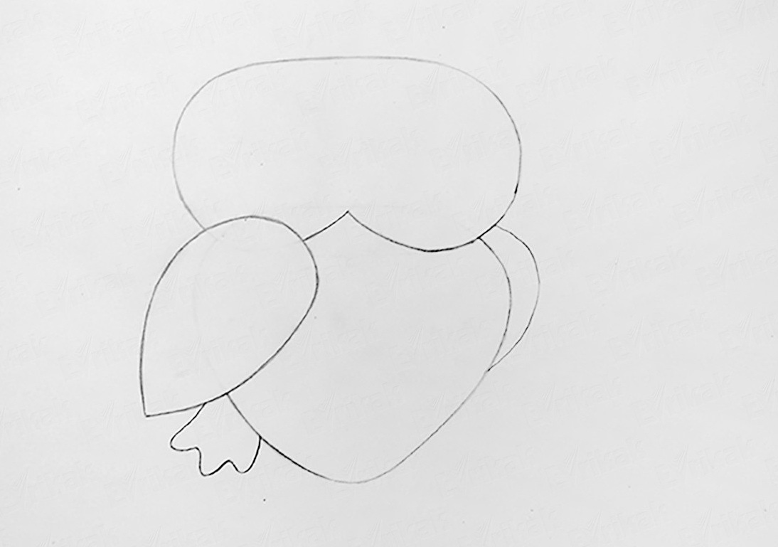 dorisuem-hvost Как рисовать сову карандашом поэтапно для начинающих и детей? Как рисовать по клеточкам сову, красками?