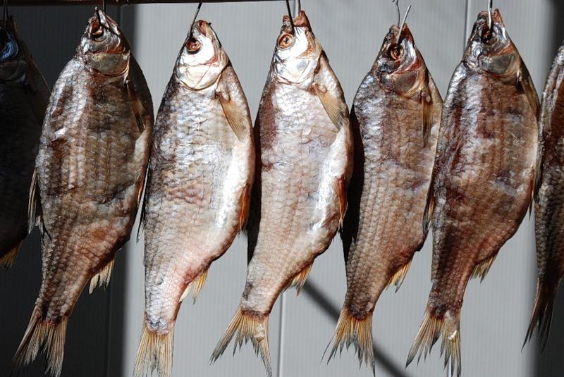 Сушка рыбы на балконе