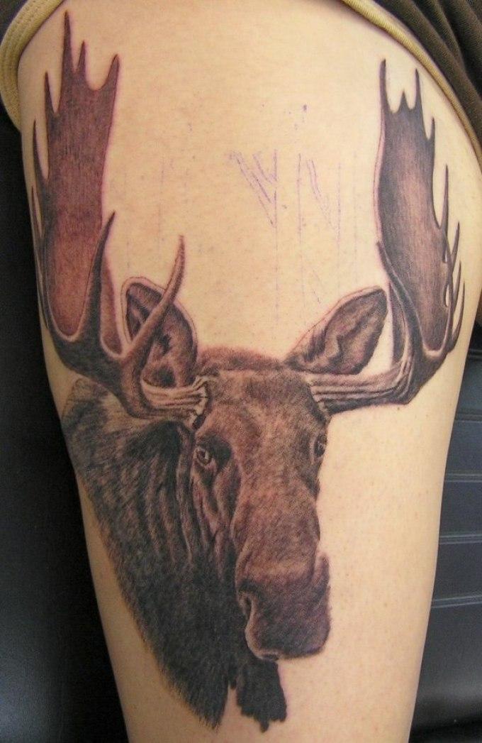 Татуировка-амулет в виде лося