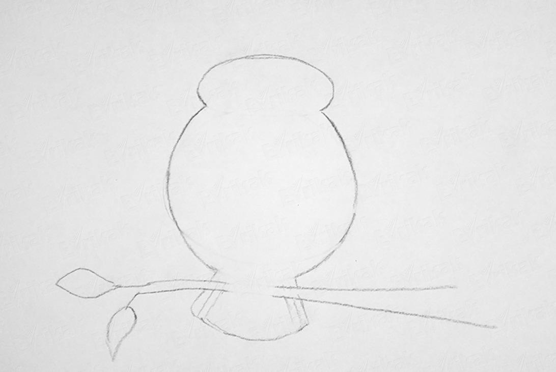 stiraem-lishnie-linii Как рисовать сову карандашом поэтапно для начинающих и детей? Как рисовать по клеточкам сову, красками?
