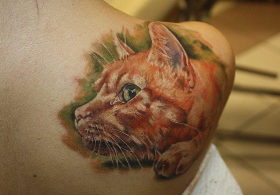 Рыжий кот - татуировка
