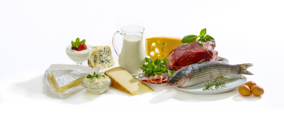 Белковые продукты питания - составляющие продукты многих диет