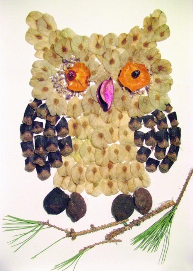 sova-iz-shishki Аппликации из цветной бумаги шаблоны распечатать для детей 2-3, 4-5, 6-7 лет. Фото. тема осень, зима, весна