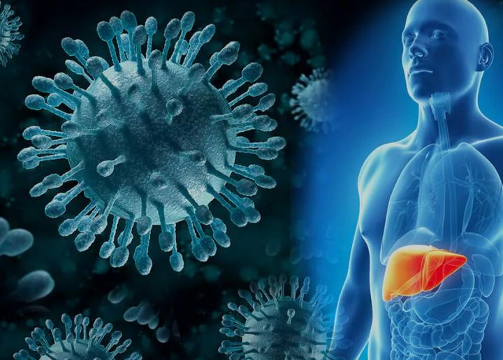 Вирусный гепатит в и с — причина температуры 37,0-37,5