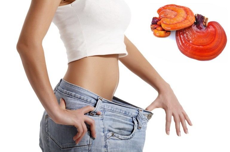 Гриб при похудении