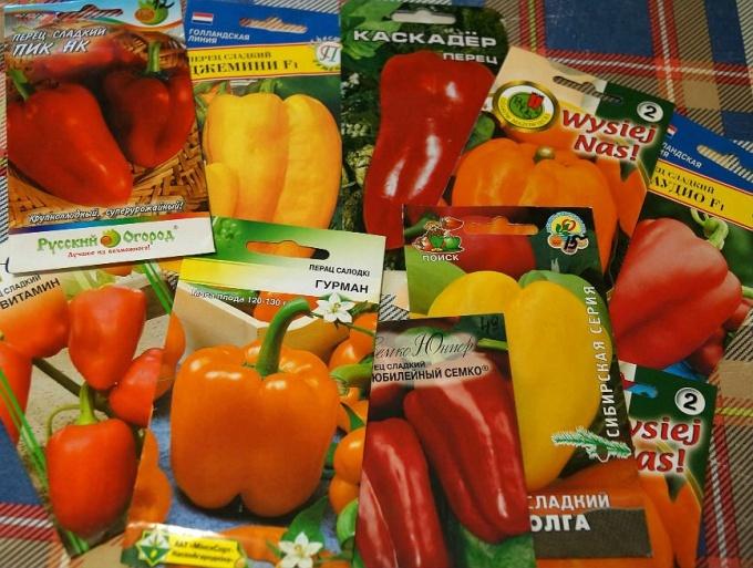 Семена болгарского перца в пакетах.