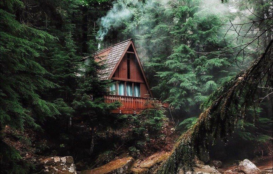 Лесной домик во сне - символ тайн, секретов.