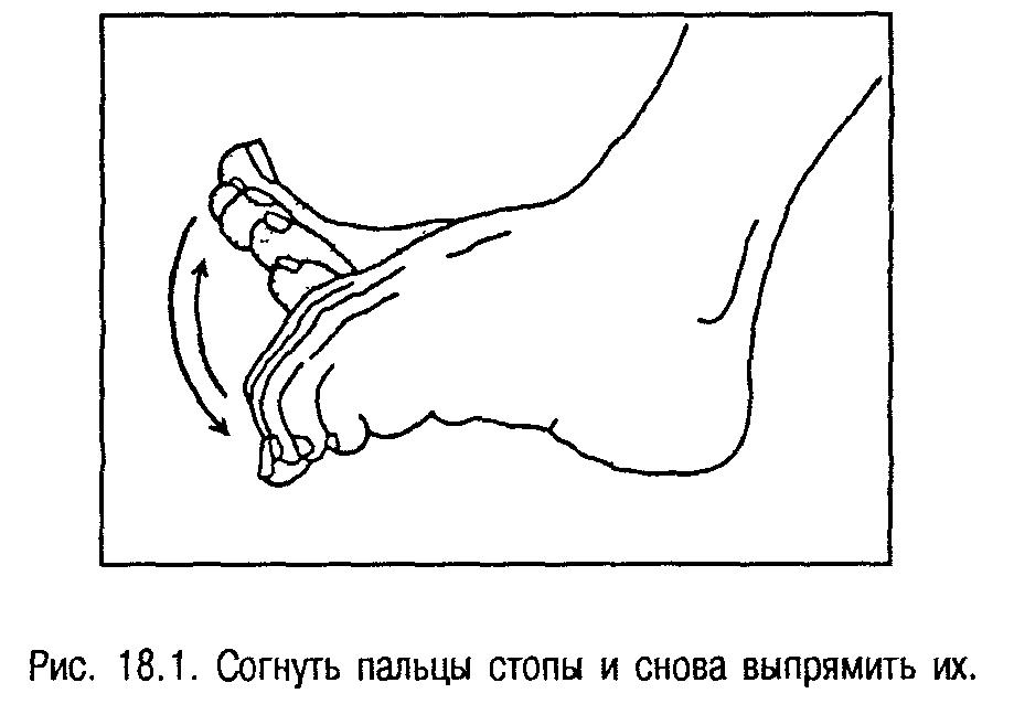Гимнастика для стоп