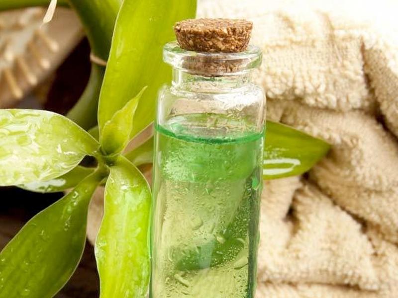 Эфирное масло, полученное из листьев чайного дерева