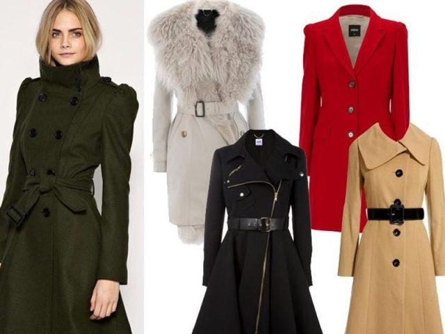 45d52a9d53f Женское пальто 2019 года  цвета