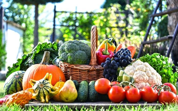 Заговор подействовал для сада, огорода, хороший урожай