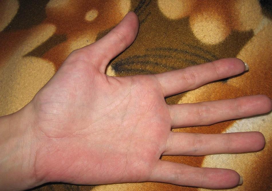 Линии на левой руке показывают, к чему человек расположен с рождения