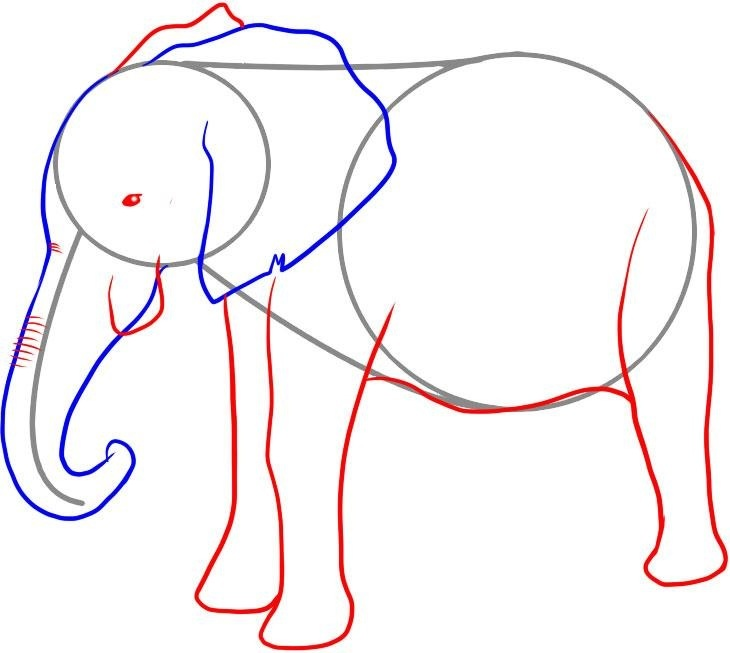 kak-narisovat-slona-karandashom-risovanie-nizhnei-chasti-tela Как нарисовать слона поэтапно: 5 вариантов как легко и просто нарисовать слона карандашом
