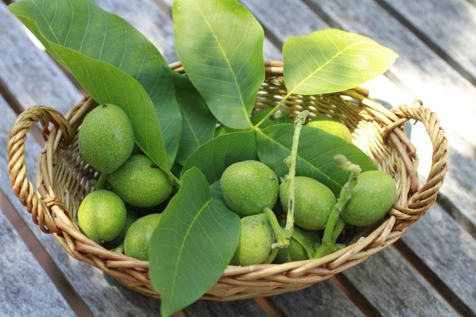 В составе зеленых грецких орехов очень много витамина c