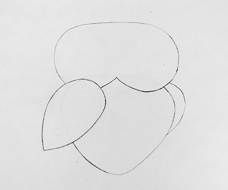 vtoroe-krilo-spryatano-nazad Как рисовать сову карандашом поэтапно для начинающих и детей? Как рисовать по клеточкам сову, красками?