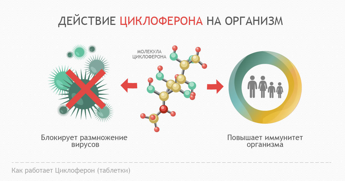 Циклоферон блокирует вирусы и усиливает иммунитет