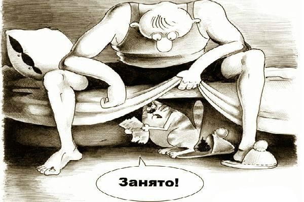 Кошка редко гадит из мести. обычно, у нее есть на это более веские причины.