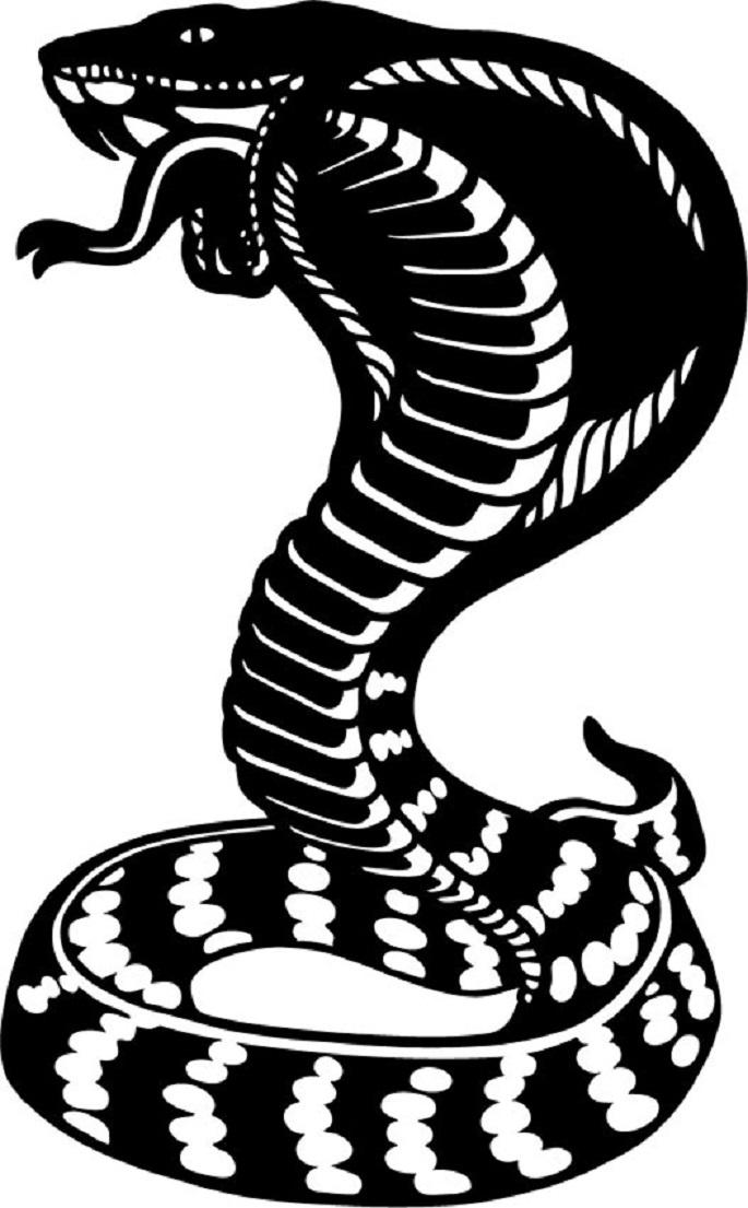 этом видео картинки татуировок змей для цветника