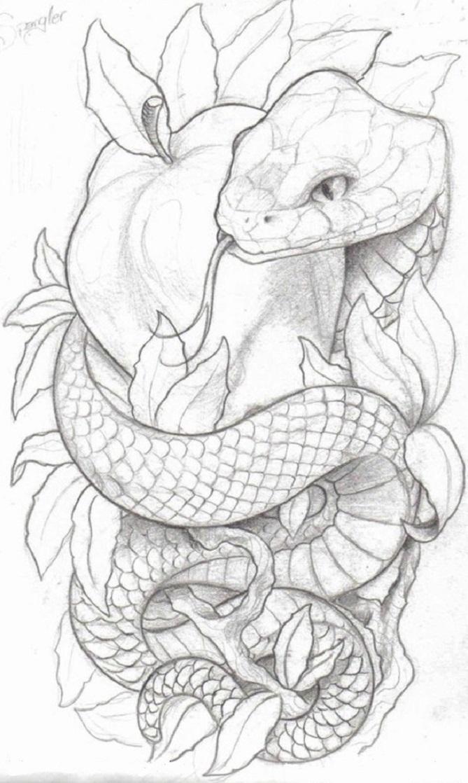картинки змей карандашом в цветах декор тортов