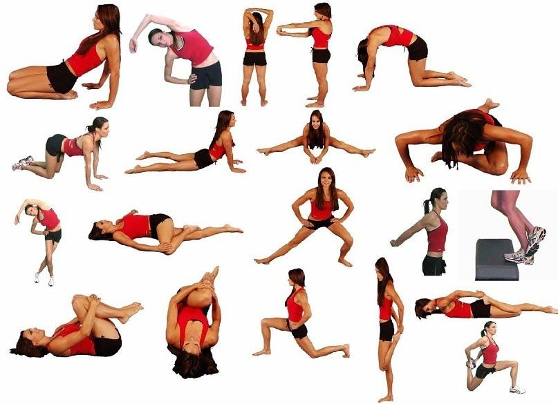 Упражнения на растяжку и для шпагата