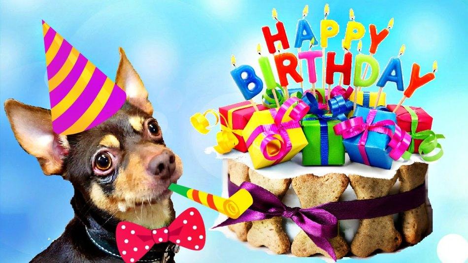 Картинки с днем рождения собачку