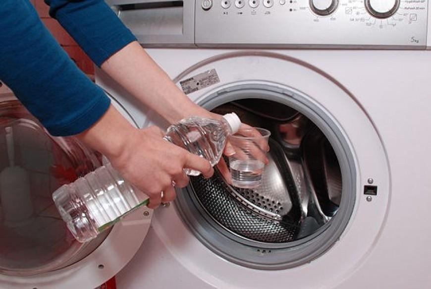 Обгаженную котом одежду стирают с уксусом и содой.