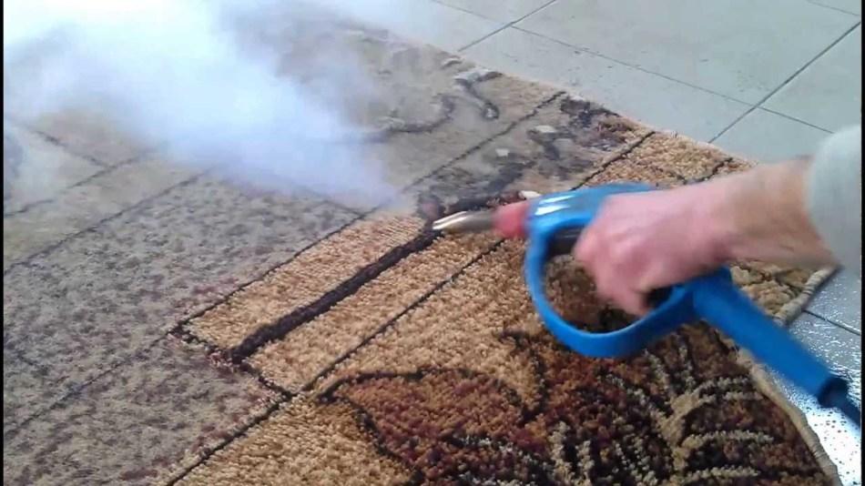 Чистим палас в домашних условиях пароочистителем