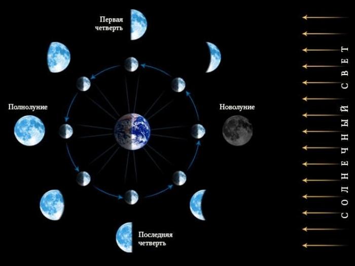Четыре фазы луны