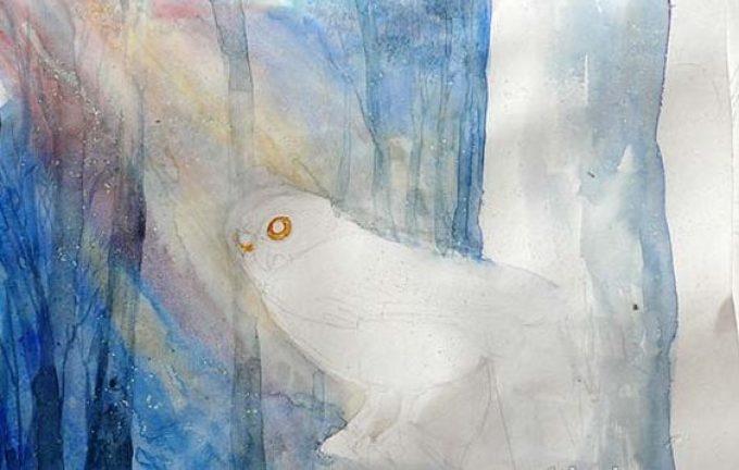 cd5979d71c5e350e49f75d3bc9695614 Как рисовать сову карандашом поэтапно для начинающих и детей? Как рисовать по клеточкам сову, красками?